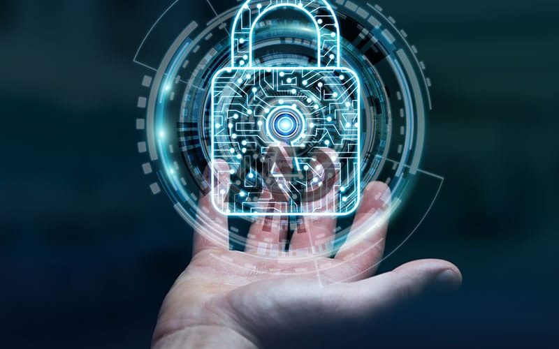 hak-digital-pembuatan-website